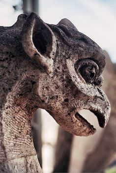 #stone #statue #beautiful #gargoyle
