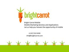 carrot logo emulates a light bulb (on of the cruddy new fashioned kind that barely provides light tho)