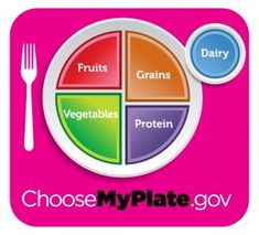 Choose my plate lesson