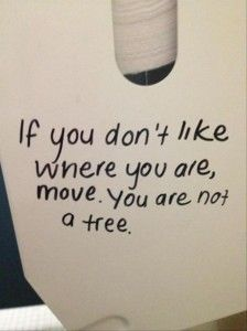 toilet paper rolls, tree, root, funny pictures, monday
