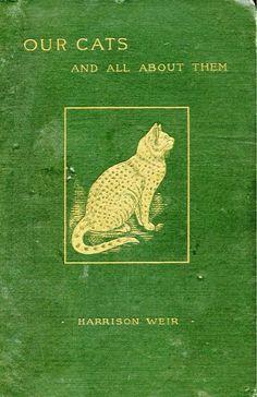 essays on harrison bergeron