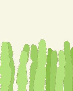 Cacti. Jorey Hurley