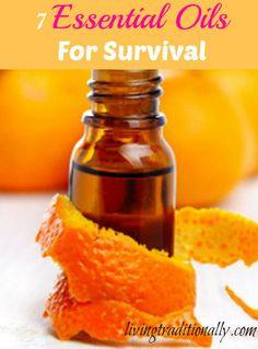 7 Essential Oils For Survival