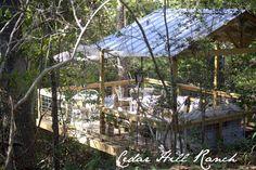 IMG_1683.jpg 640×426 pixels  treehouse!