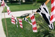 Western Ideas, Cute Party