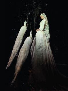 peacocks and princess bird, magical queens, fairytale fashion, the queen, peacock wedding, fantasy queen, fairi, beauti, white peacock