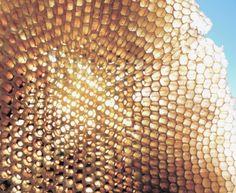 honey comb light