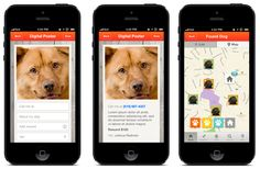 In case your dog goes missing -> 5 Tech Hacks Every Dog Owner Needs to Know! #dogs #lostdog