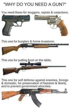 """""""Why Do You Need A Gun"""""""