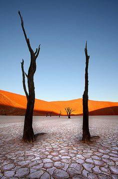Namib-Desert. Eine h