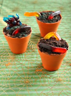 Creepy Crawly 'Mud Pie' Cupcakes