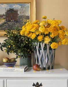 yellow flowers, at home, houses, vignett, blue