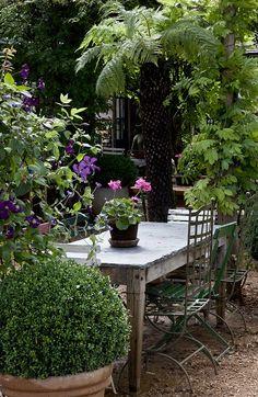 a table in the garden