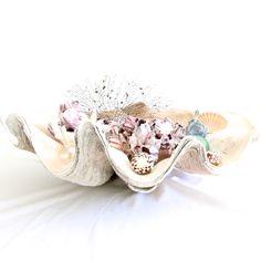 beautiful old giant clam shell at www.coastalvintage.com.au