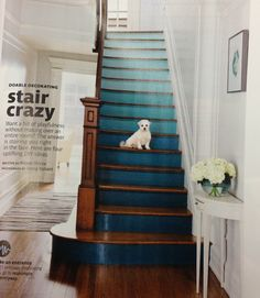 Ombré Painted stairs