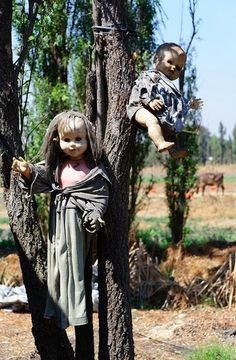 10 of the World's Most Scariest Places to Visit - The Island of the Dolls, Mexico
