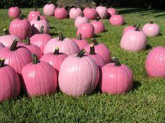 Pink pumpkin patch