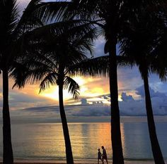 One quiet morning, Hand in hand. Courtesy of FtLauderdaleSun