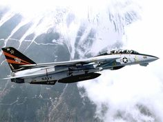 Tomcat Black Knights I LOVE the F - 14!!  Thank you for finding this!