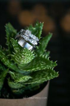 succulant ring shot stephiejoy.com  Kelly + Trevor Wedding Sneak Peek | Stephie Joy Weddings