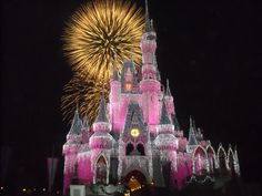 Castle at the holidays 2009  Pink & sparkly.
