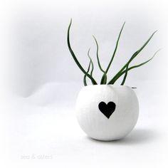 Air plant heart. #designlovefest