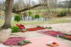 vintage rugs + hanging plants