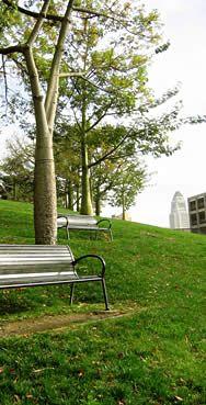 Parks & Green Spaces : DowntownLA.com