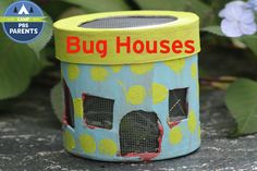 Bug Houses | Crafts for Kids | PBS Parents