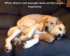 Comfy spot