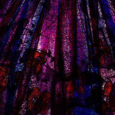 <3 Acid Rain with Red Flowers Digital Art  - Acid Rain with Red Flowers Fine Art Print