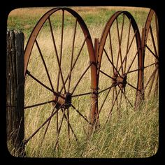 Close up view of part of a metal wagon wheel fence/  karencaseysmith.com