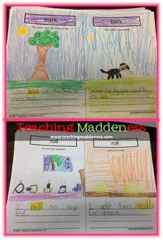multiple meaning words with amelia bedelia