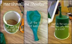 marshmallow shooters - force and motion