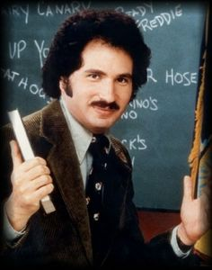 Welcome Back, Kotter (TV series) Frm bd: A 60s & 70s childhood