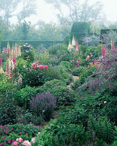 Foxgloves, cranesbills, and peonies flank a narrow path in this lovely cottage garden.