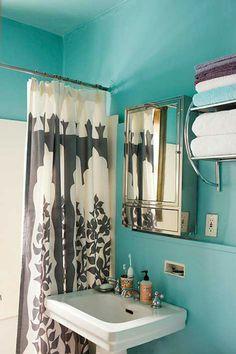 I like the idea of a turquoise bathroom.