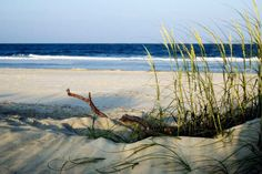 In the early stages of planning a girls' weekend to Tybee Island, GA!