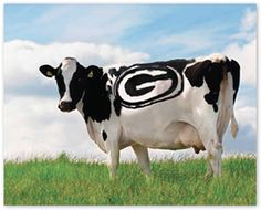 Happy cows come from Packer country!