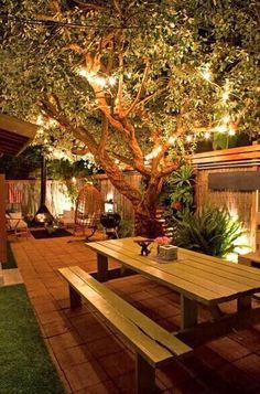 Backyard the lighting the privacy fencing @Parilyn Hairod  --- You need this in your backyard!