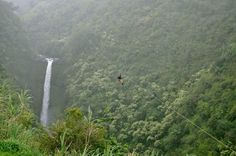 Zipline on the Big Island! Hawaii A must to do in dec!