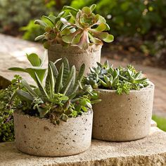 Three hypertufa pots