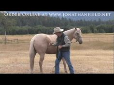 """Trust And Fundamentals"" With Jonathan Field - The (re)Start is Everything Series (DVD 1)"