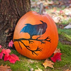 Add a spooky scene to a plain pumpkin. Use the downloadable stencil for this crow-and-branch scene.