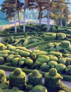 is this real?  reminds me of alice in wonderland or something...