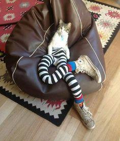 Catty Long Legs, friend to SLBK.