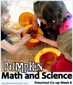Preschool Co-op Week 8, Letter Pp check activ, cleanses, pumpkin math, student, science activities, seed, pumpkins, preschool coop, kid