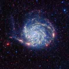 The Pinwheel galaxy, otherwise known as Messier 101, sports bright reddish edges in this new infrared image from NASA's Spitzer Space Telescope. Research from Spitzer has revealed that this outer red zone lacks organic molecules present in the rest of the galaxy. The red and blue spots outside of the spiral galaxy are either foreground stars or more distant galaxies.