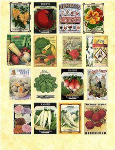 vintage seed packet collage