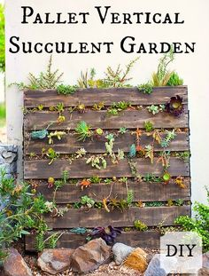 Pallet Vertical Succulent Garden // DIY